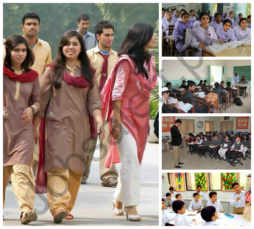 thesis on education in pakistan The very scale of pakistan's education sector -- more than 150,000 public education institutions serving over 21 million students and a huge private sector that serves another 12.