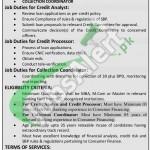 Bank of Khyber Peshawar Jobs