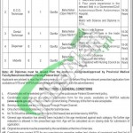 WAPDA Hospital Quetta Jobs