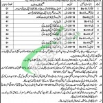 Govt Medical Store Depot Lahore Jobs