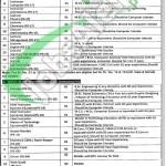 TEVTA Bahawalpur Jobs