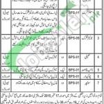 District & Session Court Gwadar Jobs