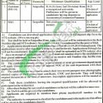 Punjab Labour Court Jobs