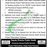 Directorate General Health Services KPK Jobs