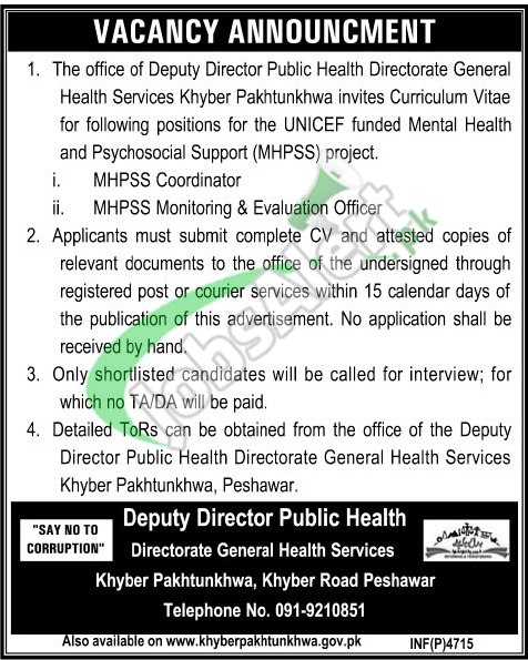 Directorate General Health Services KPK Jobs