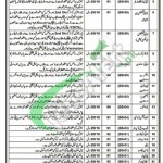 Jobs in Health Department Hafizabad