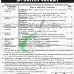 Govt of Sindh Jobs