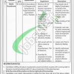 Lyari Development Authority Jobs
