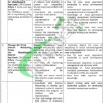 Special Education Department Punjab Jobs