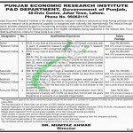 Punjab Economic Research Institute Jobs