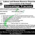 Labour & Human Resource Department Punjab Jobs