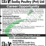 Sadiq Poultry Jobs