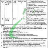 Provincial Mohtasib Punjab Jobs 2020