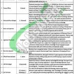 Provincial TB Control Program Punjab Jobs