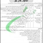 Council Islamic Ideology Jobs