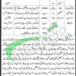 Punjab Population Welfare Department Jobs