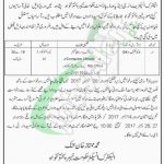 Energy and Power Department KPK Jobs