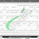 Public Sector Organization Peshawar Jobs