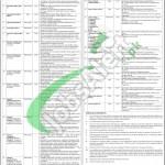 Hayatabad Medical Complex Peshawar Jobs