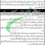 Anti Terrorism Court Rawalpindi Jobs