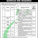 Recruitment offers in Ministry of Information Broadcasting and National Heritage 2016 Govt of Pakistan