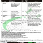 Punjab Education Foundation Jobs