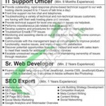 Recruitment Opportunities in Saremco Technology Private Limited for IT Support Officer, Sr Web Developer, SEO Expert