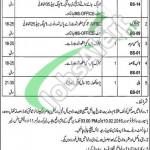 Punjab Labour Court DG Khan Jobs