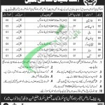 Ammunition Depot Sakrand Jobs