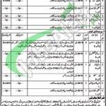 Jobs in Livestock Department Punjab