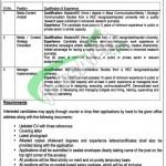 Punjab Institute of Language Art and Culture Lahore Jobs