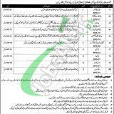 Punjab Institute of Language Art and Culture Jobs 2019