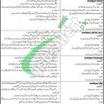 Thar Coal & Energy Board Sindh Jobs