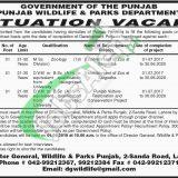 Punjab Wildlife Department Jobs 2019