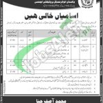 Ministry of Climate Change Pakistan Jobs