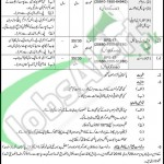 Recruitment Offers in Pakistan Ranger Sindh 2016 Latest Advertisement