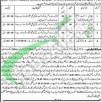Situations Vacant in Livestock & Dairy Development Department 2016 in Khushab For Veterinary Assistant, Driver