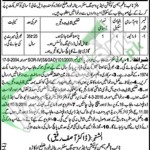 Employment Offers in Office of the Naib Nazim 2016 Okara For Driver Latest Advertisement