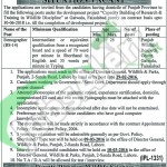 Punjab Wildlife & Parks Department 06 February 2016 For Stenographer Career Opportunities