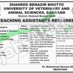 Employment Offers in SBB University of Veterinary & Animal Sciences 2016 Sakrand Application Form