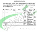 Situation Vacant in Wapda Hospital & Allied Dispensaries 2016 Peshawar NTS Application Form Latest Advertisement
