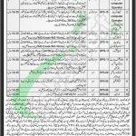 BISE Peshawar Jobs