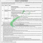 Balochistan University Jobs