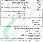 Government Said Mitha Hospital Teaching Hospital Lahore Jobs