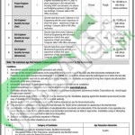 Career Offers in FBE&GIF Islamabad 2016 Latest Advertisement