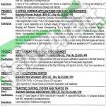 Directorate of Information & Technology KPK Jobs April 2016 Career Offers