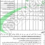 Career Offers in Irrigation Department Khanewal Jobs April Career Offers