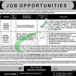 PEF Jobs