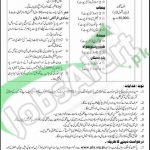 Career Offers in Pakistan Overseas Foundation Aplir 2016 PTS Application Form Latest
