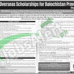 HEC Overseas Scholarship